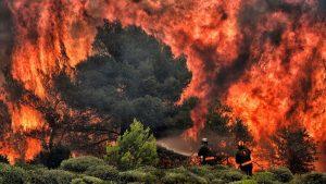 آتش سوزی و گرمایش کره زمین-تیک سرویس