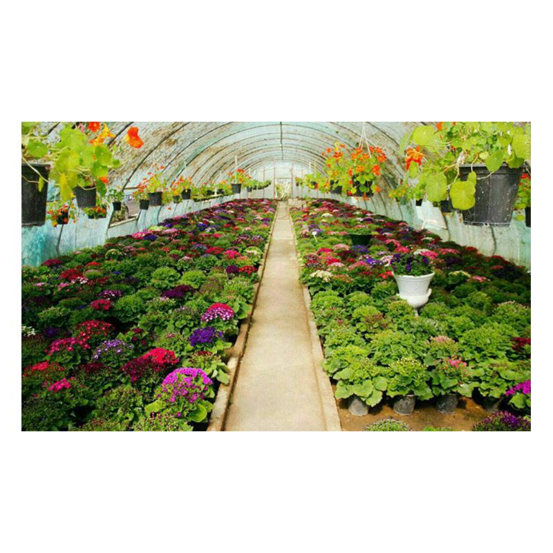 انواع سیستم های گرمایشی قابل استفاده در گلخانه ای