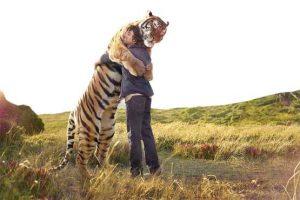 شکارچی حیوانات